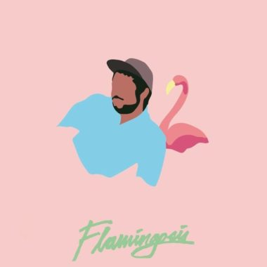cover flamingosis