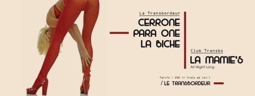 cerrone-para-one-la-biche-la-mamies-all-night-long